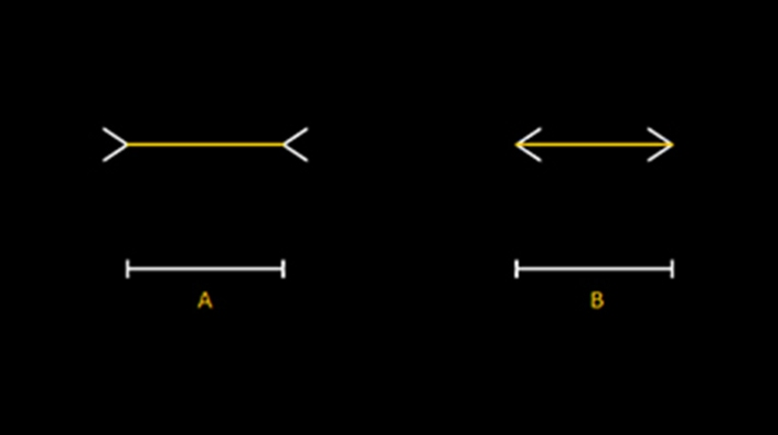 Müller-Lyer illusion:  This geometrical illusion consists of arrows pointing either inward 'A' or outward 'B' on both ends. In this example, the shafts of the arrow-like shapes are of equal length yet shaft 'A' appears longer than shaft 'B'. Interestingly, right-angle corners are generally man-made and there have been demonstrations of indigenous tribes living in circular huts being less susceptible to this illusion.